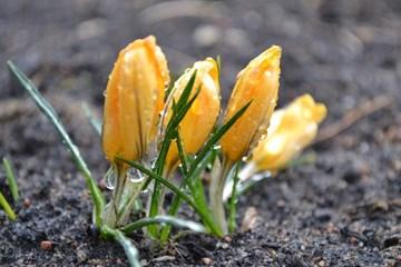 http://static.err.ee/gridfs/FF942172670B641DB54077136B6486C3CC8AB978803481106CE368172F8C983E.jpg?&crop=%280%2C82%2C1140%2C726.0677966101695%29&cropxunits=1140&cropyunits=760&rotate=0&s.contrast=0&s.saturation=0&s.brightness=0&s.grayscale=0&s.alpha=1&quality=100&s.roundcorners=0%2C0%2C0%2C0&format=jpg