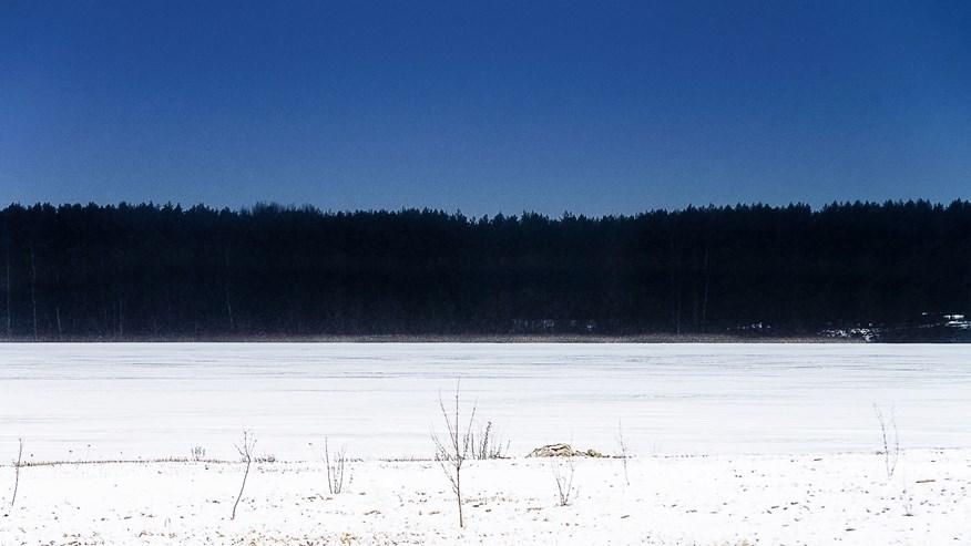 Картинки по запросу Эстония манифест