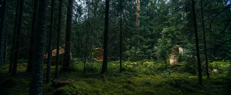 Giant wooden megaphones installed in Estonian forest to amplify